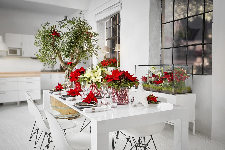 Eccovi 3 Tutorial Perché Possiate Cimentarvi Voi Stessi Nella  #BC0F14 1500 1000 Come Addobbare Una Sala Da Pranzo Per Natale