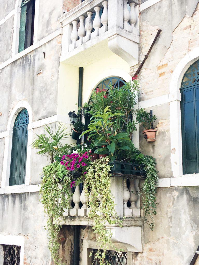 balconi di Venezia, Francesca Guatteri